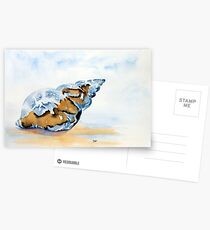The Glass Shell Postcards