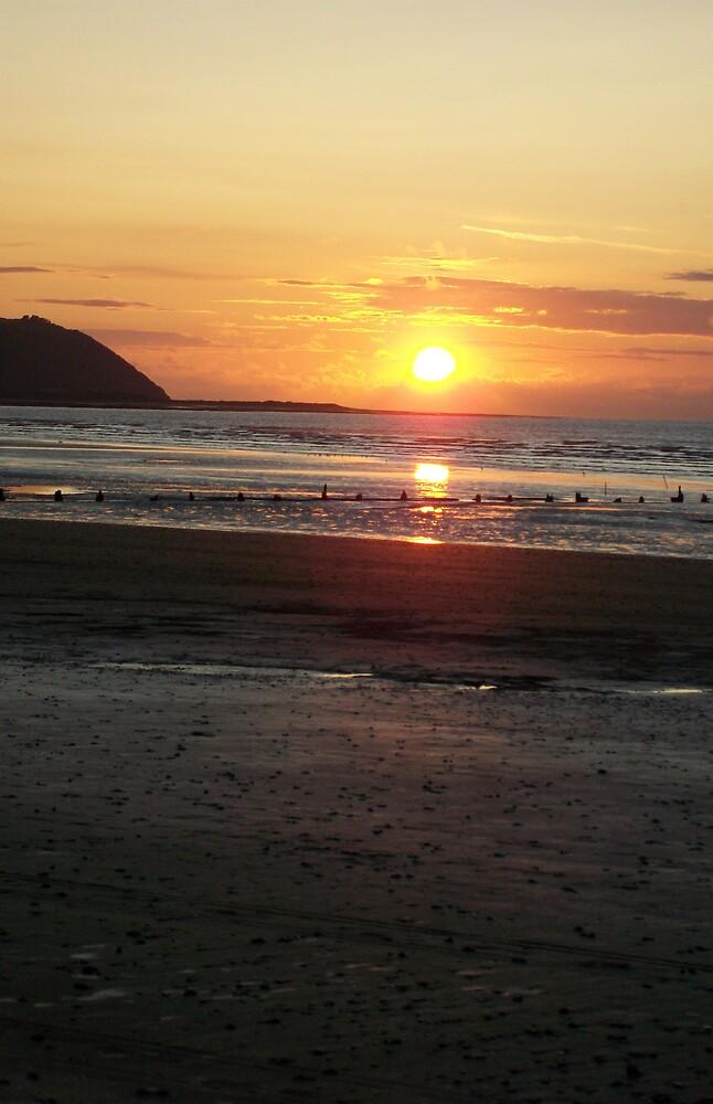 Beach Sunset by stardust8