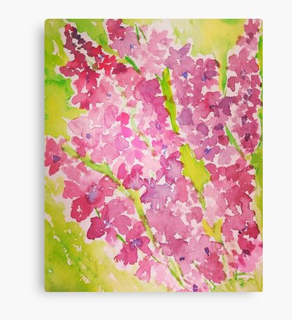 Larkspur Canvas Print