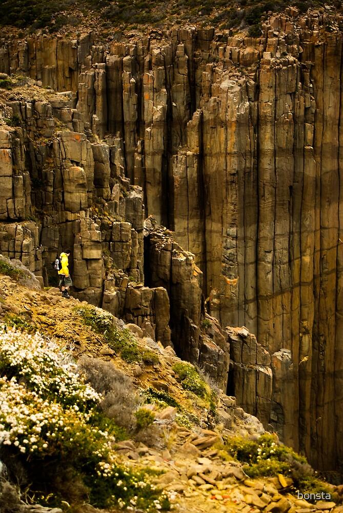 Rodrigo at edge of Tasmania by bonsta