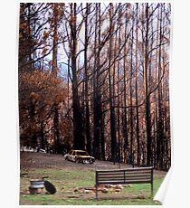 Bushfire around the Campfire? Poster