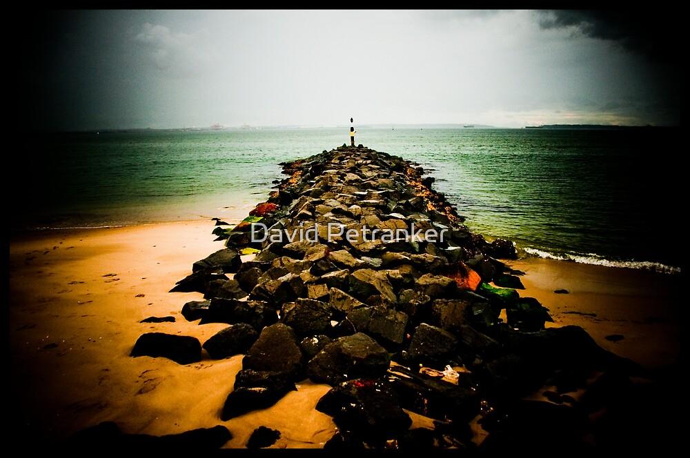 Brighton Beach by David Petranker