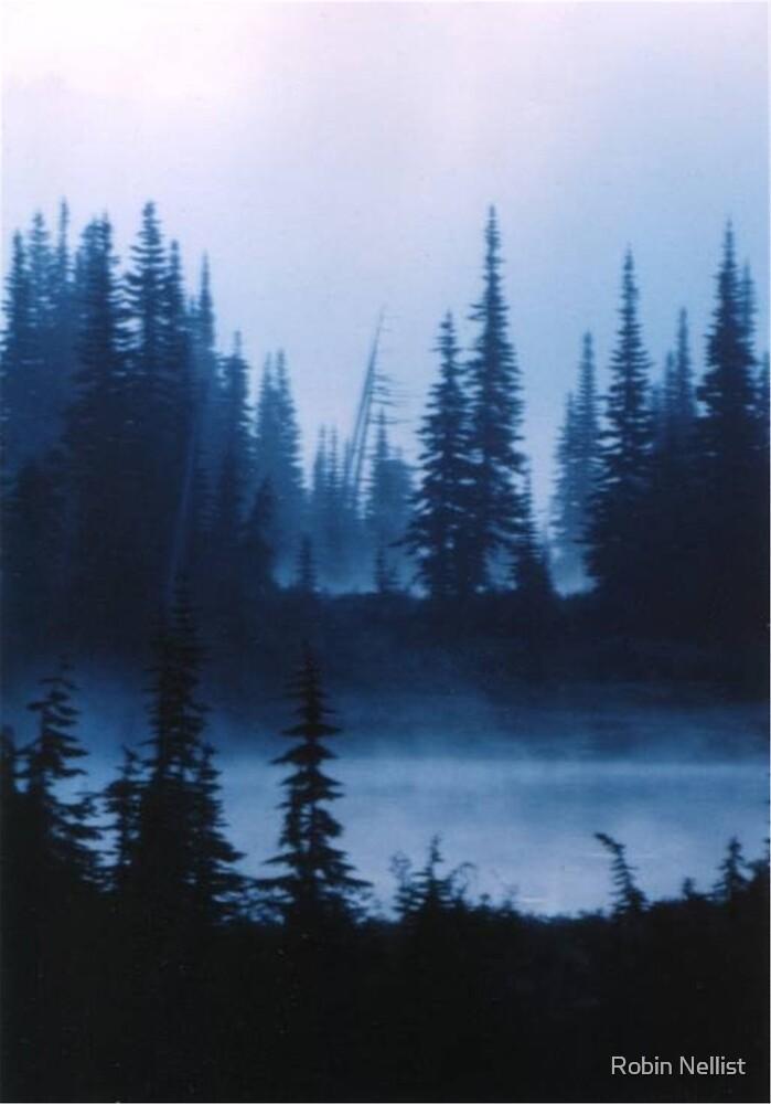 Barely Dawn by Robin Nellist