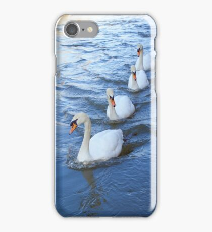 Swan lane iPhone Case/Skin