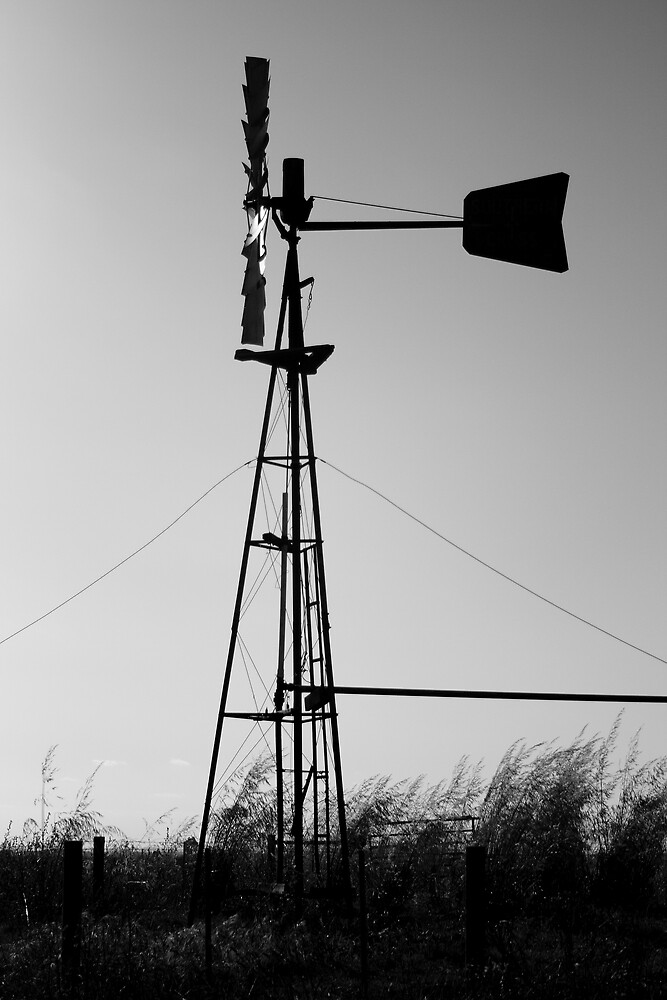 Wind Power by DianaC