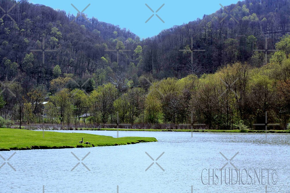 Well fields in  Saltville, Va. by Linda Costello Hinchey