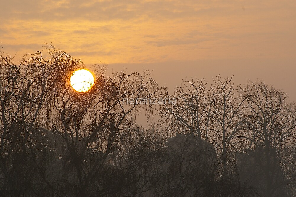 Sunrise from my bedroom window 2 by naranzaria