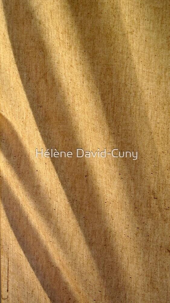 Soft dunes by Hélène David-Cuny