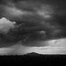 Downpour by Pamela Inverarity