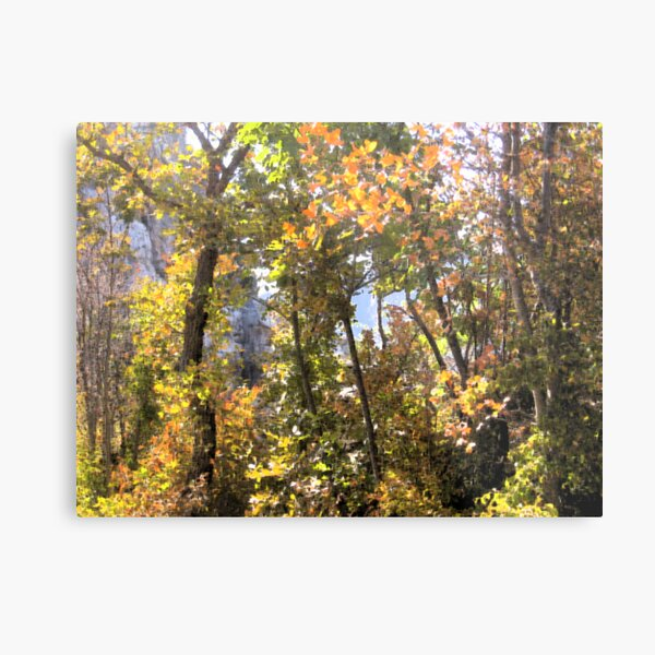 AUTUMN GAME IN THE WOODS Metal Print