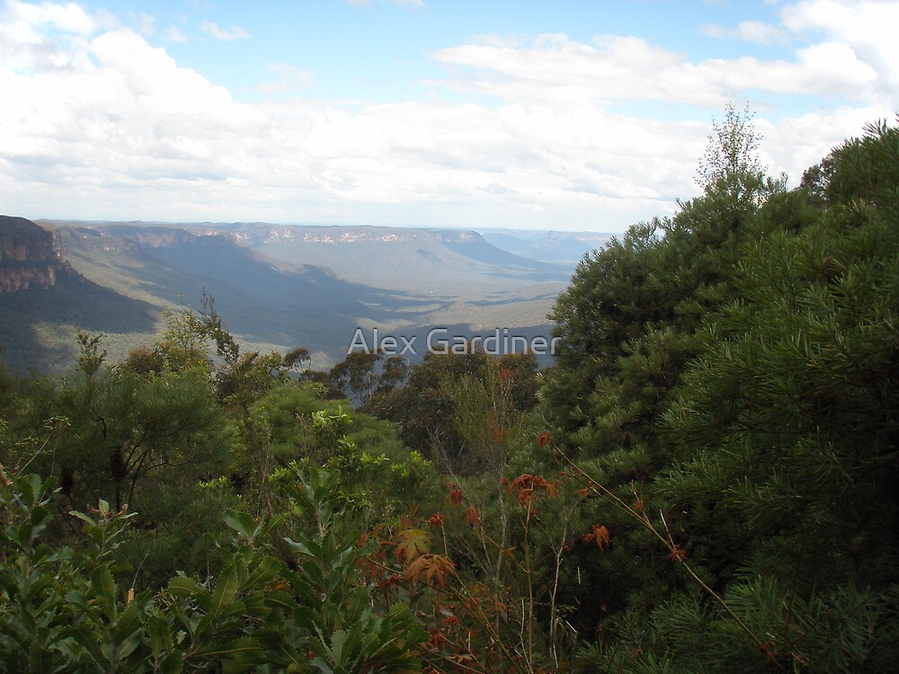 Introducing the Blue Mountains~lg1 by Alex Gardiner