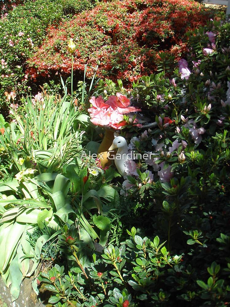 Introducing Leura Gardens~bd8 by Alex Gardiner