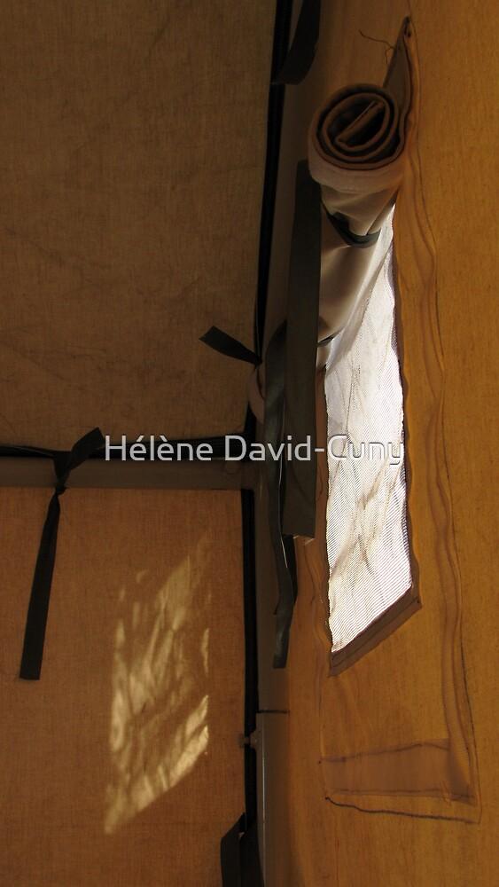 Unrolling the unseen inscriptions by Hélène David-Cuny