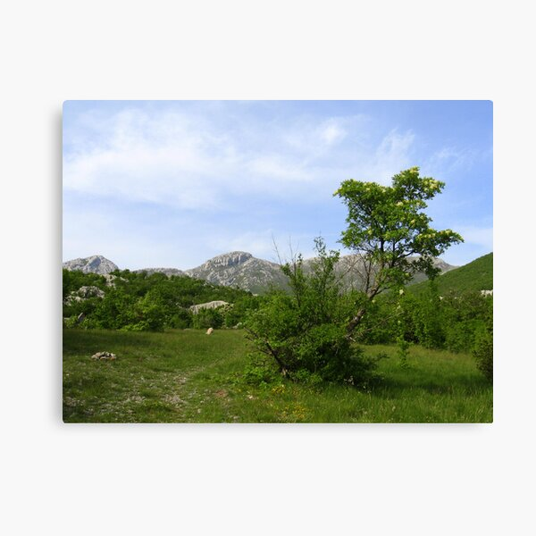 LAND OF FAIRIES and ANGELS Canvas Print