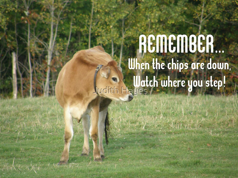 Don't Step on the Chips! by Judith Hayes