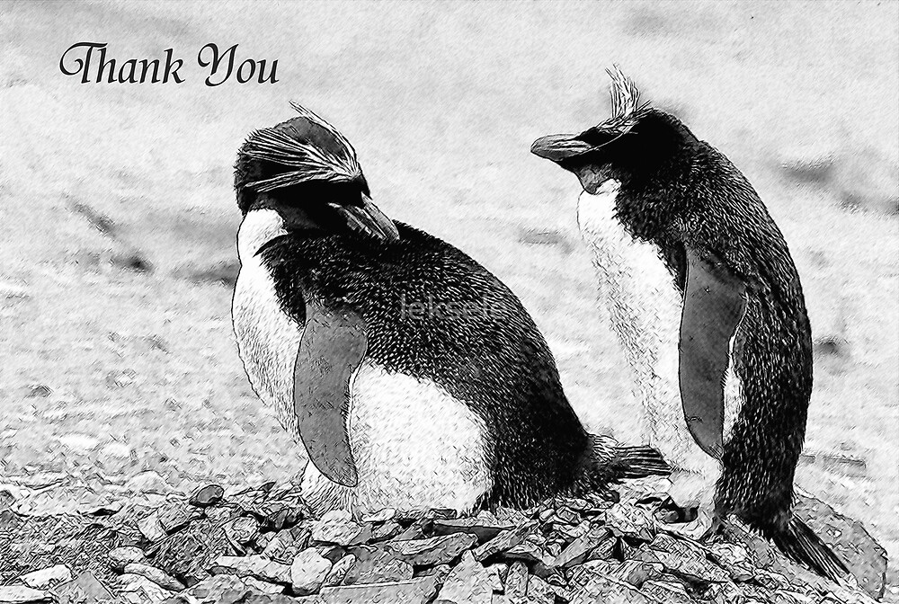 Thank you card by leksele