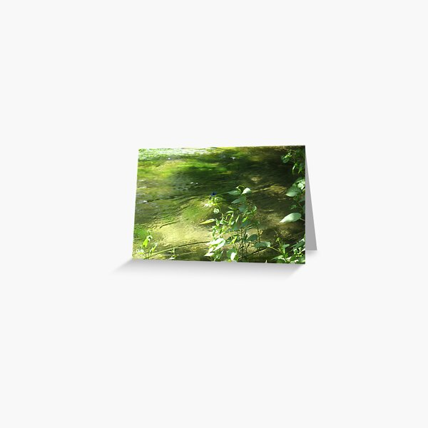 GREEN DREAMS ON THE RIVER Greeting Card