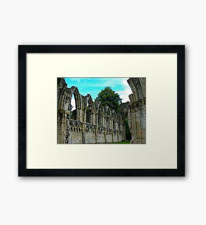 St Marys Ruins - Museum Gardens York Framed Print