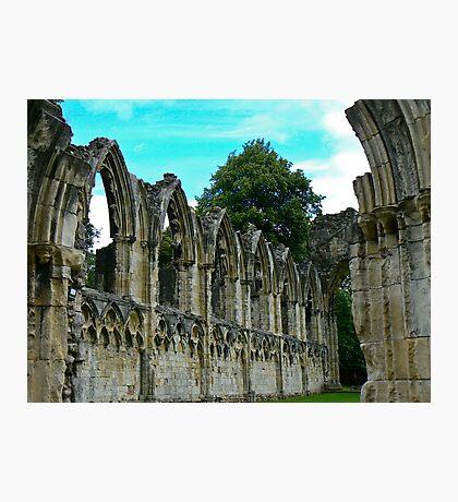 St Marys Ruins - Museum Gardens York Photographic Print