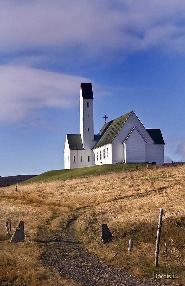 Hallgrimskirkja  by Þórdis B.