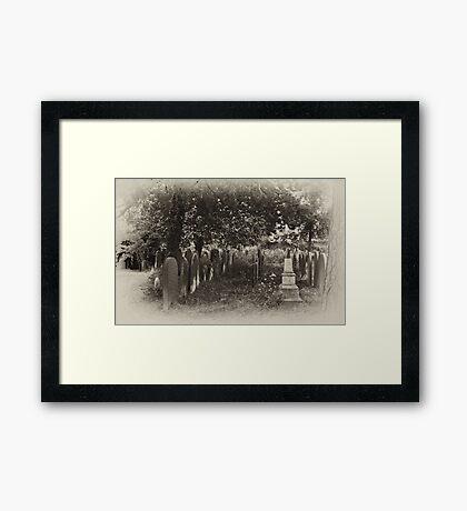 This Garden of Death #1 Framed Print