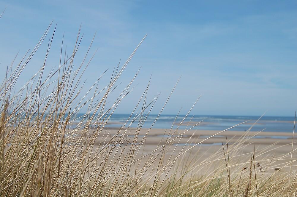 Seaside by adele90