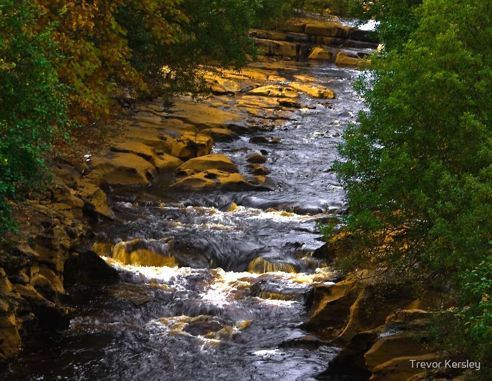 River Swale at Keld by Trevor Kersley