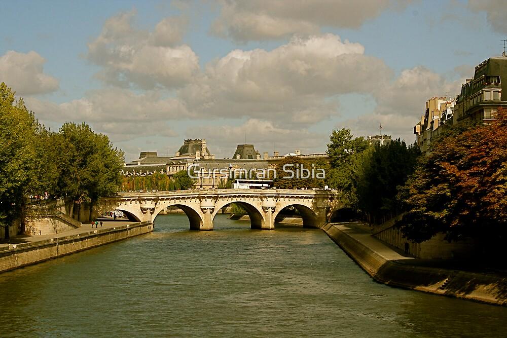 Pont Neuf by Gursimran Sibia