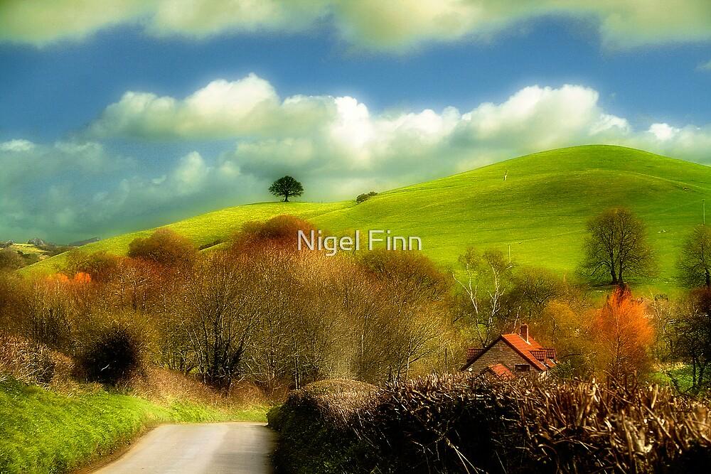 A Scene Of All Seasons by Nigel Finn