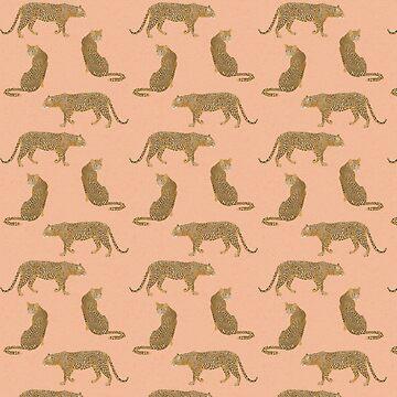 leopardo al atardecer de lauragraves