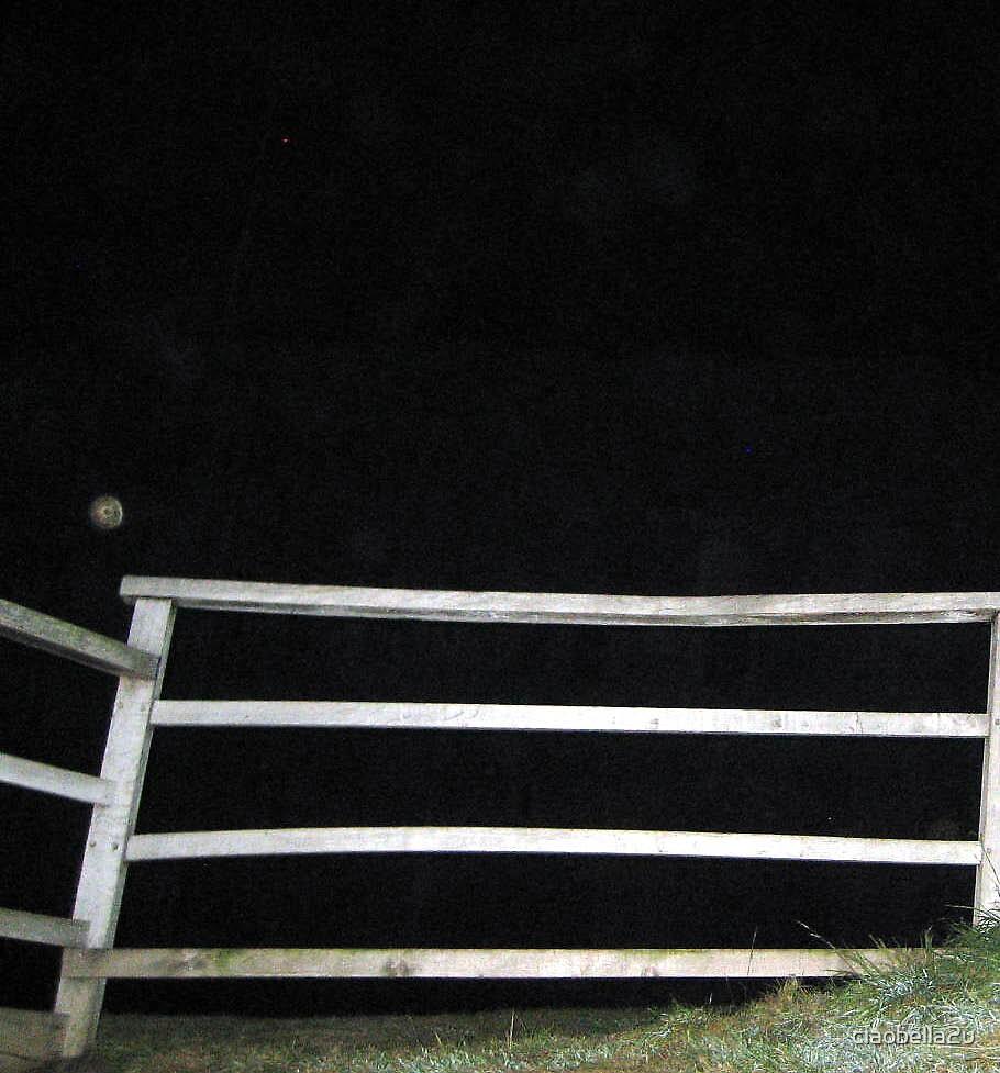 Sitting On The Fence  by ciaobella2u