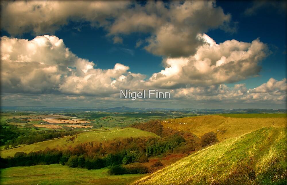 Autumn Creeping Closer by Nigel Finn
