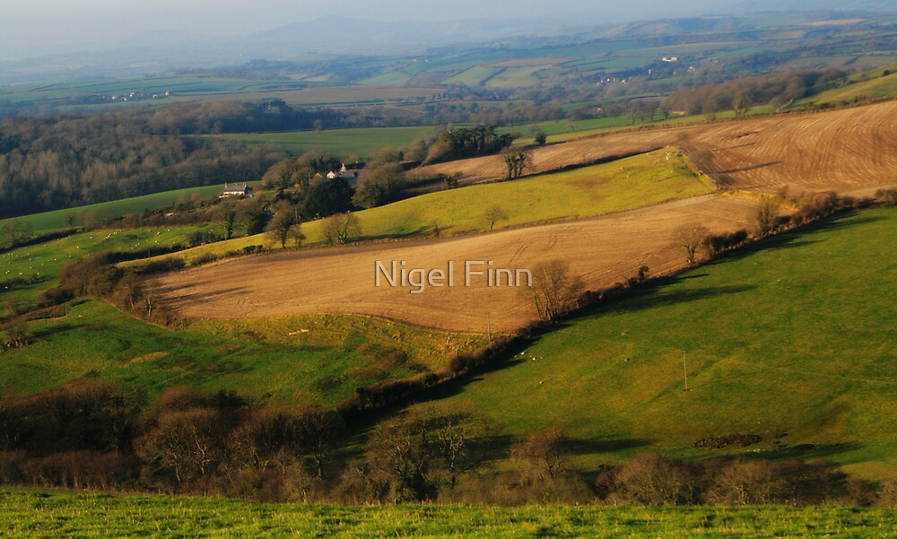 Back To Pastures New by Nigel Finn