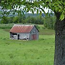 Old Long Reach Barn by Martha Medford