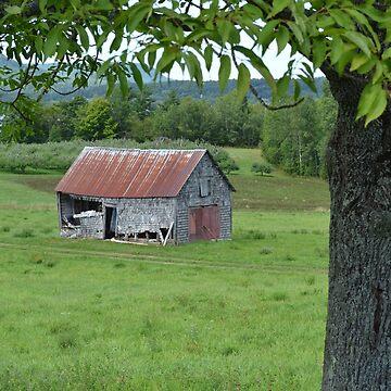 Old Long Reach Barn by MarthaMedford