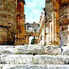 Paestum: flight of steps of temple by Giuseppe Cocco