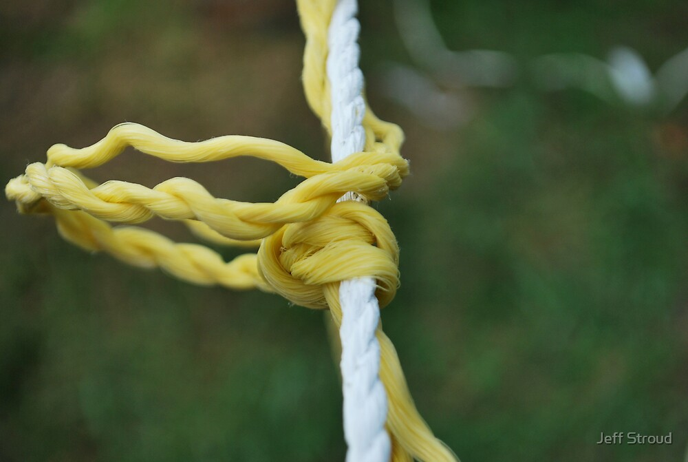 Knots on the line by Jeff stroud