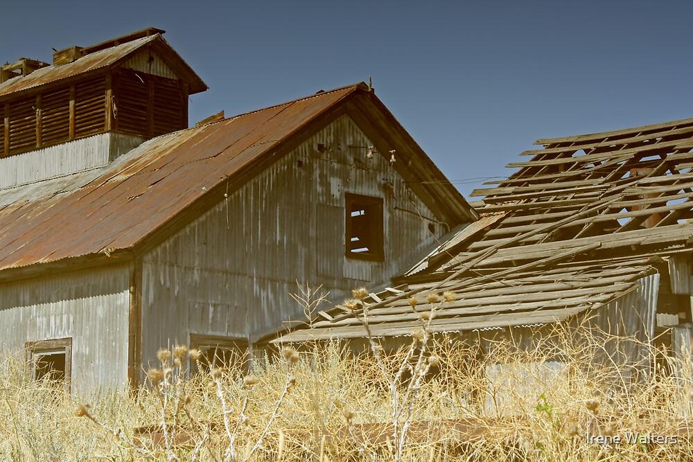 Forgotten Coal Mine by Irene Walters