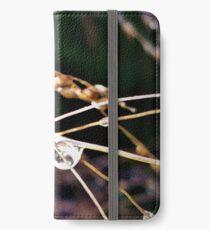 Autumn Rain iPhone Wallet/Case/Skin