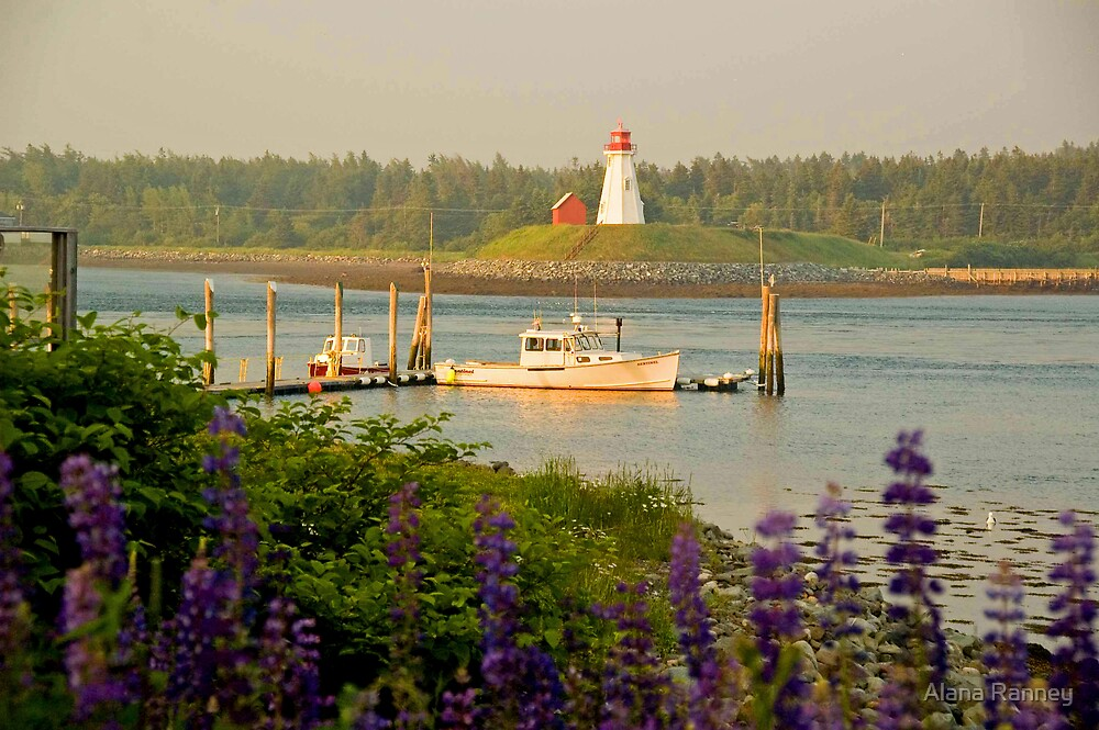 Mulholland Lighthouse from Lubec  by Alana Ranney