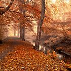 Channeling Autumn by Cat Perkinton