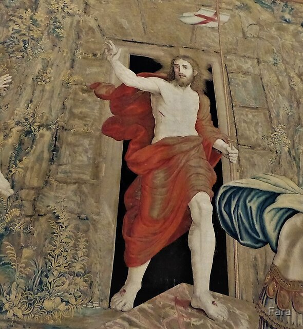 Vatican Tapestry by Fara