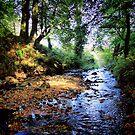 Gleno Falls (6) by SNAPPYDAVE