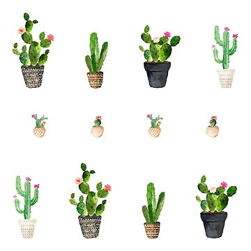 Kaktus-Muster von BekkaCampbell