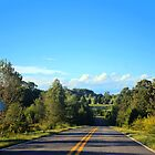 Down A Country Road by Cynthia48