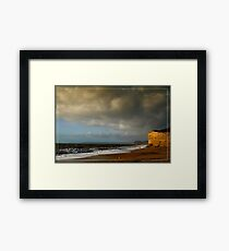 Competing For The Light Framed Print