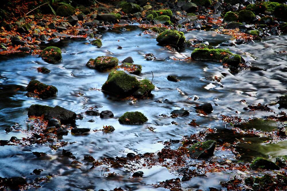 Gleno Falls (9) by SNAPPYDAVE
