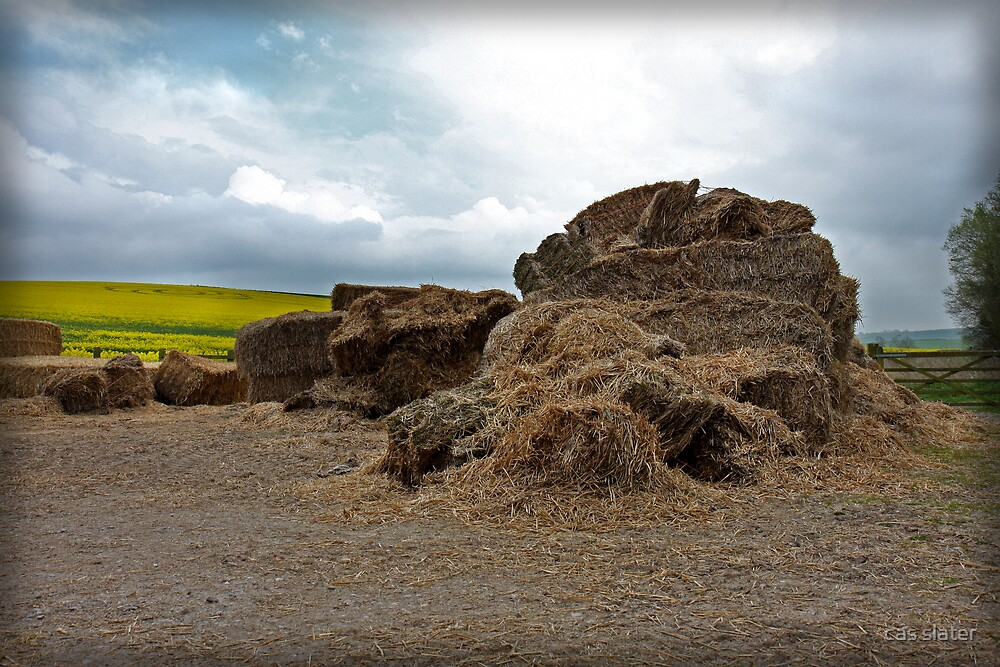 Hay by cas slater
