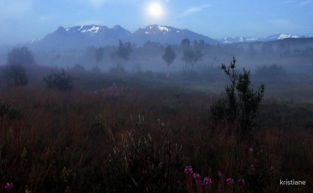 Misty Moors by kristiane