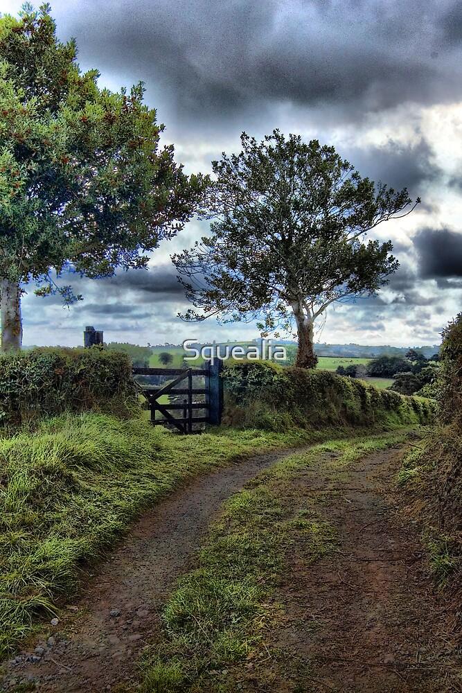 Farm track, near Tedburn St Mary, Devon by Squealia